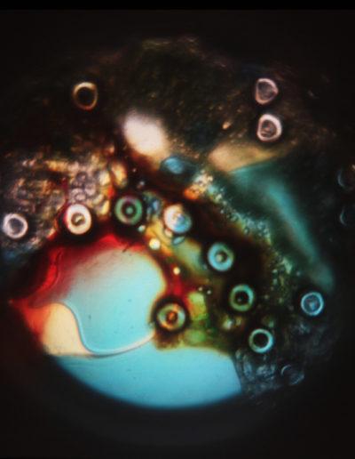 Mya Lurgo, CosmoMania Destinata I, Vetrino, mixed media, oli colorati, lente d'ingrandimento, proiezione a soffitto o parete, Ø massimo 200 cm, 2006