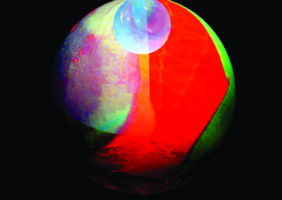 Mya Lurgo, FREE TREE Albero della Vita Cosciente e Coscienziosa, installazione, digital art proiettata su tela, Ø massimo 150 cm, 2012