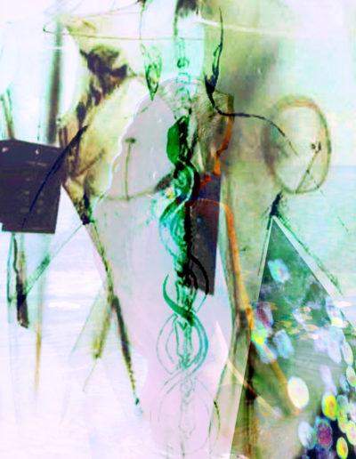 Mya Lurgo, E.V.A_Evoluzione Valore ADaMico, digital art, 2008